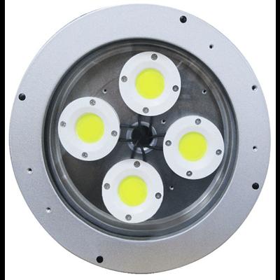 L1102 (COB) Hazardous Location LED Light with IP Camera