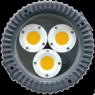 L1105 (COB) Explosion-Proof LED Light