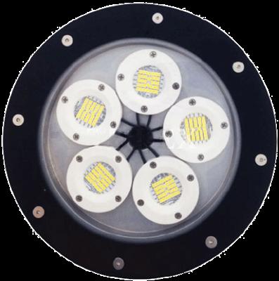 L1703 (DOB) Hazardous Location LED Light