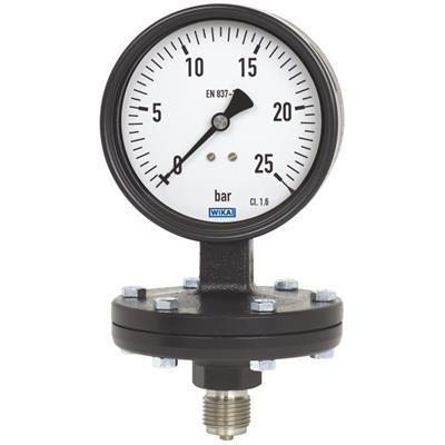 Model 422.12, 423.12 Diaphragm Pressure Gauge